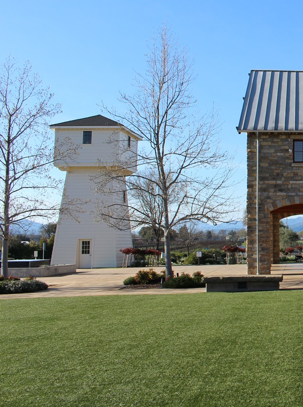 The lawn at Silver Oak